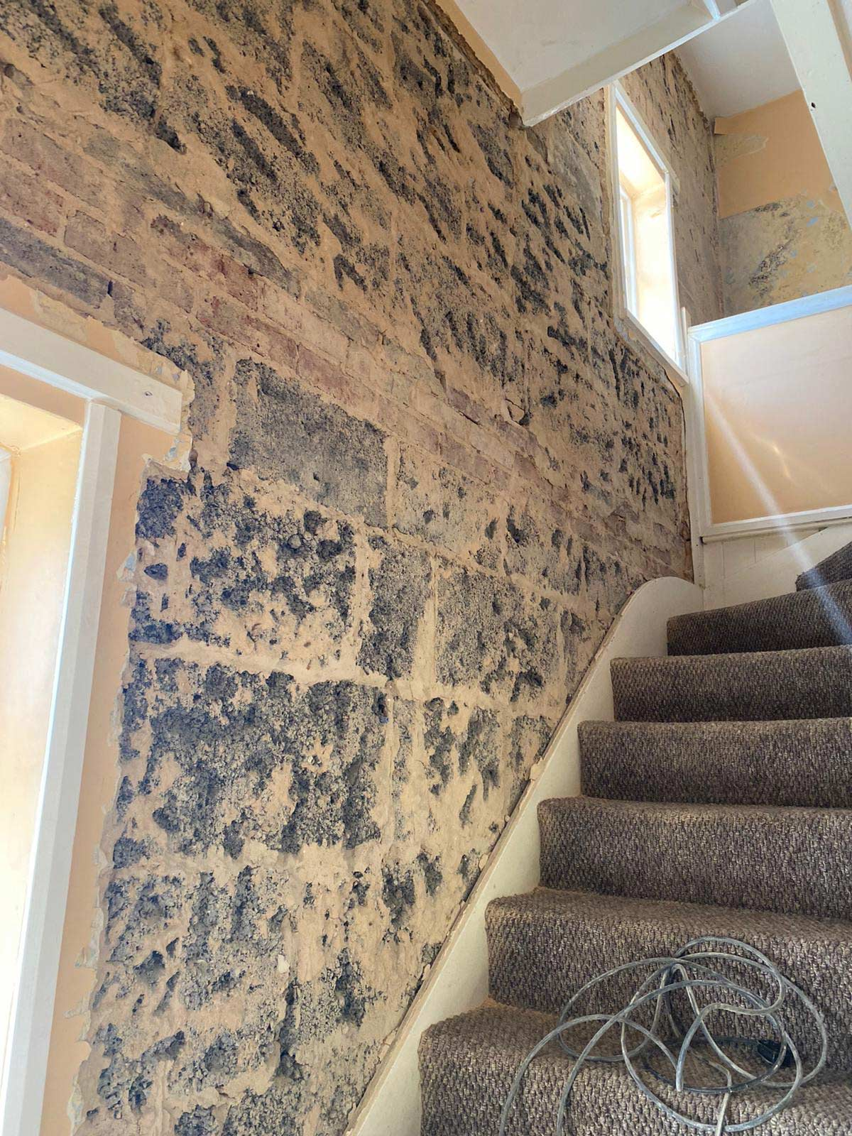 Damp Proofing Services in Surrey